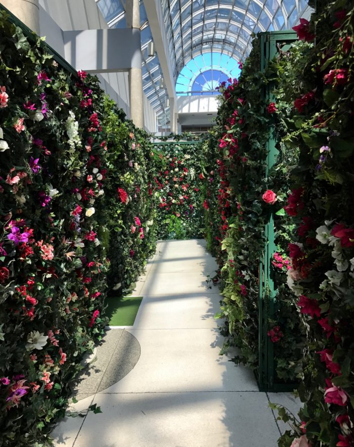 If You Would Like To See A Little Mall Garden Entertainment, Thursday  Afternoons Are The Time To Visit. A Living Statue Will Be Planting Itself  In The ...